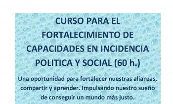 Curso sobre Incidencia Social y Política en REDES